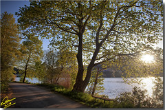Sunny lake ... HDR (Emil9497 Photography & Art) Tags: lake orestiadalake greece hellas nikond90 d90 emilathanasiou emil9497photographyart kastoria