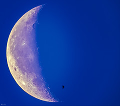 Flight to night / Полёт за ночью (BogKY) Tags: 2018 июль july лето summer bogky sonyalpha7r2ilce7rm2apscmode celestronnexstar4se rawstackingsoft telescope forkarmfromcelestronnexstar4seineqmode remotecontrolunitrcc5 астрофото астрофотография astrophoto astrophotography moon луна птицы bird