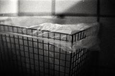 Empty Garbage (Diaffi) Tags: emptygarbage analog ishootfilm selfdeveloped blackandwhite monochrome lines pentaxmesuper kodaktrix iso400