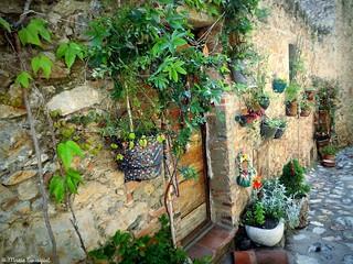 Joyeuses façades de Castelnou