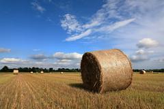 Nei campi (Guido Barberis) Tags: campo fieno rotolo cielo nuvole azzurro blu verde colore agricoltura campagna natura