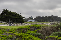 Point Pinos Lighthouse Pacific Grove II (rschnaible) Tags: monterey californiacoast coastal coastline northerncalifornia landscape west western pacific lighthouse architecture point pinos grove