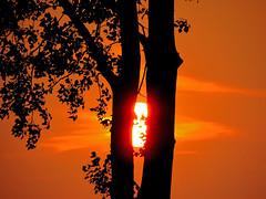 Durchblick (Deutscher Wetterdienst (DWD)) Tags: himmel sky sunset sonnenuntergang abendrot