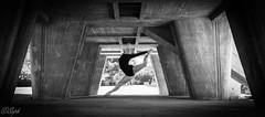 IMG_5231 (aochlesia13) Tags: monochrome contraste nuances danse saut grace beauté esthetique jump architecture beton geometrie frenchwoman femme danceuse canon eos80d sigma marseille bouchesdurhone lecorbusier lacitéradieuse