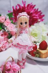 IMG_1656 (kwokt59) Tags: doll azone pico pureneemo piconemo d 112 sahras sahra mode white strawberry cake