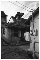 HengMian34 (nickthepluto) Tags: shanghaigp3 zeiss ikon zm biogon 2828 bw d76 film