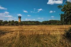 Wasserturm... (hobbit68) Tags: wasserturm grashalm gras baum tree turm water tower wolken sky himmel clouds blau blue sun sunshine sommer summer fujifilm xt2
