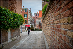 walk the dog (kurtwolf303) Tags: 2018 italien stadt venedig italy italia city brücke bridge venice venezia person umbrella schirm nikond5500 nikon buildings street alley lane streetphotography strasenfotografie wall urban dslr kurtwolf303