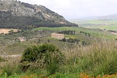 IMG_8056 (Vito Amorelli) Tags: segesta sicily dorictemple greektheater