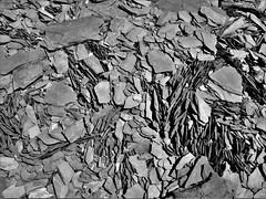 P1000397 (ElviShSpiriT) Tags: roche rocher pierre pierres nature minéraux minéral stone galets mer plage bretagne plougastel