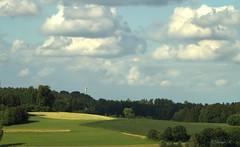 Windkraft in Bayern (Renata1109) Tags: gras feld acker himmel wolken baum bäume wald landschaft aussicht getreide outdoor sommer natur umwelt naturschutz modern energiegewinnung grün blau weis deutschland bayern alternativen