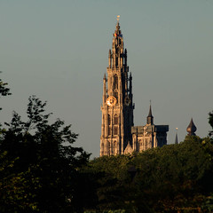 Cathedral of Our Lady (cstevens2) Tags: antwerp antwerpen anvers belgique belgium belgië burchtseweel cathedralofourlady onzelievevrouwekathedraal tower bomen church framed kerk omkaderd toren trees goldenhour goudenuurtje