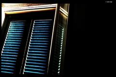 IMG_20180713_170605 (anto-logic) Tags: persiane tapparelle shutters blinds finestre condominio case abitazioni cortile home condo windows houses courtyard homes domenica passeggiata walking walkmuro wall muri walls mattoni bricks mattone brick livorno toscana luce light sole sun estate summer aria aperta lbertà libero bello puntodivista profonditàdicampo fence gardens green plants outdoors liberty lovely free pointofview depthoffield pov focus bokeh relax relaxed gorgeous nice pretty perfect leica huaweip20pro