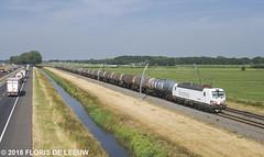 193829_Herwijnen_200718 (florisdeleeuw) Tags: siemens vectron lte 193829 betuweroute goederentrein ketelwagens