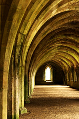 The Monks Cellar (Wilamoyo) Tags: thirskfountainsabbeystudleyroyal fountainsabbey arches curves architecture angled old ancient stone building view perspective wall windows columns