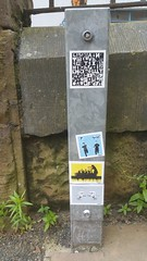 Carlisle Street Art (koothenholly) Tags: tabby carlisle stickers