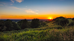 Sunset (PhredKH) Tags: canonphotography fredkh photosbyphredkh phredkh splendid oxfordshire sunset sunriseandsunsets fredknoxhooke 2470mm ef2470mmf4lisusm canoneos5dmarkiii trees grass tree sky landscape