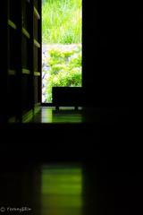 Green light (Yorkey&Rin) Tags: 2018 bokeh em5 freshgreenleaves ikutaryokuchipark japan japaneseopenairforkhousemuseum june kanagawa kawasaki olympus olympusm45mmf18 rin u6027428 新緑 生田緑地 川崎市 日本民家園 六月