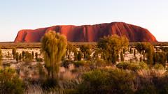 Uluru Magic (GreyStump) Tags: greystump copyrightcolinpilliner uluru ayresrock northernterritory nt australia landscape dawn sunrise nature outback redcentre redcenter