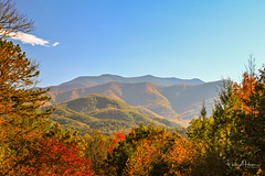 The Great Smoky Mountains (Catch the Moment Photography) Tags: landscapephotography landscape greatsmokymountains nationalpark tennessee trees wadehooperphotography fall fallcolors sky fallleaves scenic