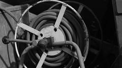 DSC06951 (A Common Courtesy) Tags: a common courtesy wellington auckland new zealand camera photo bw color black white day night monochrome bokeh sony nex 5a nex5a focuspeaking minolta mc pg 50mm 14rokkor fotodiox adapter