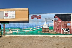 Yogurt Barn (So Cal Metro) Tags: mural dairy yogurt frozenyogurt lakeside sandiego yogurtbarn