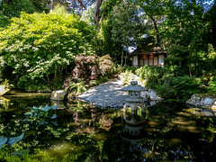 Japanese Garden at Pinetum Gardens St Austell (Graham Howarth) Tags: japanese garden pinetum gardens st austell