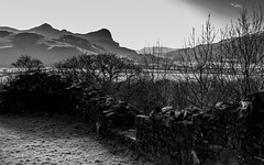 Craig yr Aderyn (Alan Hughes Mach) Tags: wales cymru eryri snownonia snowdonianationalpark tywyn gwynedd birdrock craigyraderyn castellybere blackandwhite bw bnw momo monochrome noiretblanc blackwhite black white canon eos 200d canon200d canonsl2 canonrebelsl2 canoneos200d castle landscape landschaft sunny sunlight bright dof shadows shadow outside outdoor ciel cielo ridge hill mountain scenery light winter february walk hike paysage paysaje sky skyline countryside country silhouette wall wild rural grey national wood woods tree trees contrast welsh