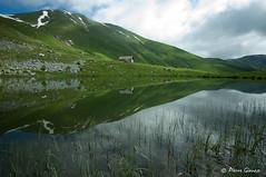 Alpages (Pierrotg2g) Tags: montagne mountain paysage landscape nature alpes alps alpi reflets reflection lac lake savoie nikon d90 tokina 1228