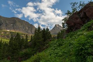 Green & Peaks