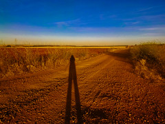 Autorretrato Peregrino (170/365) (Walimai.photo) Tags: camino santiago vía de la plata móvil bq mobile campo field golden dorado sky cielo blue azul color colour