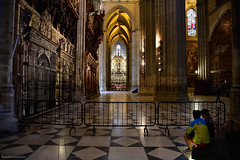 Acceso restringido - Restricted access (ricardocarmonafdez) Tags: sevilla catedral cathedral ciudad city lowlight people color arquitectura architecture nikon d850 24120f4gvr streetphtography