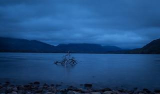 #19 Long winding shores of Loch Maree