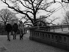 (Painter Snake) Tags: frankfurt frankfurtammain fráncfortdelmeno germany travel february 2018 apsphotographs paintersnake photografy traveller wanderlust blackwhite blackandwhite