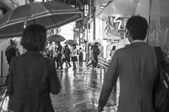 NO SUN TODAY (ajpscs) Tags: ajpscs ©ajpscsjapan nippon 日本 japanese 東京 tokyo city people ニコン nikon d750 tokyostreetphotography streetphotography street seasonchange srainyseason tsuyu 梅雨 2018 night nightshot tokyonight nightphotography citylights tokyoinsomnia nightview urbannight strangers walksoflife dayfadesandnightcomesalive streetoftokyo rain ame 雨 雨の日 whenitrains 傘 anotherrain badweather whentheraincomes cityrain tokyorain lights afterdark alley othersideoftokyo tokyoalley attheendoftheday urban tokyoite wetnight rainynight noplaceforthesun umbrella whenitrainintokyo arainydayintokyo nosuntoday