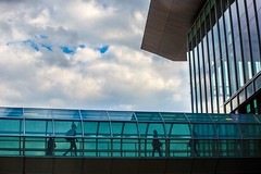 Indianapolis, IN - 8/26/15 - #365 (joefgaylor) Tags: indiana indianapolis iupui higheredphoto higheredphotography high higheredmarketing highered campus college university architecture