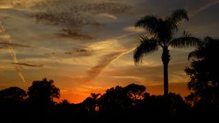 Bradenton Sunset