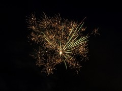 P7020090 (Copy) (pandjt) Tags: ottawa canadaday beaconhill beaconhillcommunityassociation ontario fireworks loyolapark