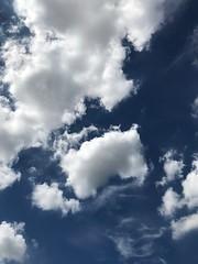 Deep blue & white (光輝蘇) Tags: sky morning kk