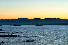 Sunset in Esterel - French Riviera -3D0A6944 (jmlpyt) Tags: summer sunset sunrise sunlight var provencealpescotedazur provencealpescôtedazur provence saintemaxime sainttropez esterel destinationdevoyage mediterraneansea mer mediterraneancountries merméditerranée mediterranean méditerranée travel traveldestinations travellocations transports boat sailboat région region sud southoffrance france frenchriviera frenchculture silhouette canon photography photo iphoneography getty gettyimages
