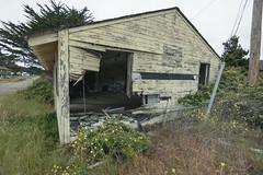 hole (Super G) Tags: nikon313 abandoned building hole wall dope grass fordord graffiti