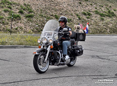 July 20 2012 - Along for the ride (La_Z_Photog) Tags: 072012deadindianbeartoothrally lazy photog elliott photography chief joseph scenic highway mountains dead indian pass harley davidson