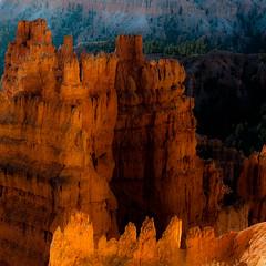 In Canyons 251 (noahbw) Tags: brycecanyon d5000 nikon utah autumn canyon desert erosion hills hoodoos landscape light natural noahbw rock shadow square stone sunlight trees