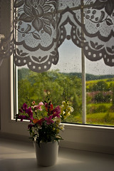in a countryside (VladoV) Tags: countryside window flower view outlook overlook scene village rural retro country rustic summer green home house looking outside scenery garden ecology idyllic real natural slovakia lifestyle oldfashioned eu