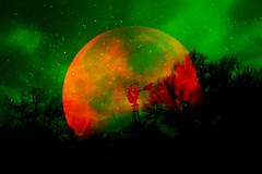 [ .   SUBURBIA IN SPACE 13   . ].RAW.PBM.PNG (ǝlɐǝq ˙M ʍǝɥʇʇɐW) Tags: suburbiainspace atmosfarfysik space physics colors green red moon satellite l2 lagrangian earth satire tronascifi tronalofi tronaremix absinthe sky invalidtag fridaythe13th darpa laurieanderson williamsburroughs deepintheheartofdarkestamerica thegodfatheroftheamericannightmare atmosphere science paging dr benway magnetotail radiation peligro colonization of arsenicandoldlace auntabby auntmartha