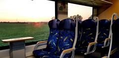 In der RB48 von erixx von Braunschweig Hbf nach Uelzen (claudio.bickel98) Tags: erixx netinera alstom lint vt622 regionalbahn nahverkehr spnv niedersachsen
