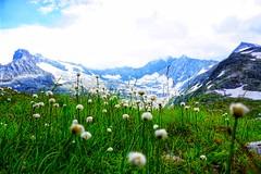 Weisssee, Austria (qqazwws18) Tags: ngc sonya6000 sony taiwan travel lake mountain austria weisssee