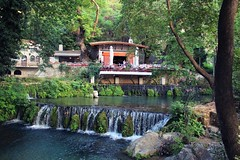 Springs of Krya, Livadia, Boiotia (AnnaGnl) Tags: kria springs livadia livadeia watermills platan trees tree water river stone bridge greece nature