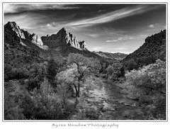 The Watchman (Michael Besant) Tags: zionnationalpark thewatchman utah sandstone tree river michaelbesant byrnemeadowphotography monochromatic bw monochrome
