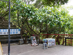 P4250023 (Mickey Huang) Tags: olympus epl6 pen lite lumix g 20mm f17 西子灣 kaohsiung taiwan mft m43 street snap